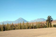 Désert Atacama Chili