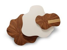 Lacquered wood veneer coffee table for living room NENUPHAR by Ginger