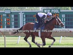 Horseplayersbet (horseplayersbet) on Pinterest