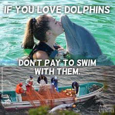 Remind your students to avoid swim-with-dolphin attractions during their summer vacations! #TeachKindness #CaptivityKills #KindKids #KindStudents #Compassion #ForAllAnimals