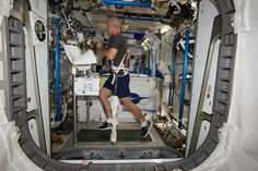 Steve Swanson Exercises on the COLBERT  ISS Expedition 40 (2 Aug. 2014) NASA astronaut Steve Swanson, Expedition 40 commander, equipped with a bungee harness, exercises on the Combined Operational Load Bearing External Resistance Treadmill (COLBERT) in the Tranquility node of the International Space Station.