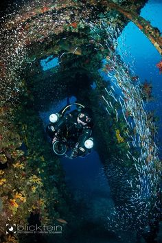 Inside the Carnatic by blickfein Inside the wreck Carnatic in the Red Sea. Together with thousands of glasfishes… Greetings Christian