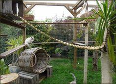 Chatterie des Jardins de Bubastis
