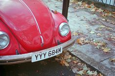love this vintage beetle (by brian ferry)