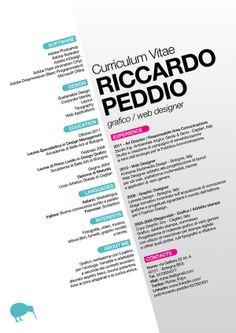 Curriculum Vitae di Riccardo Peddio / Graphic Resume on the Behance Network