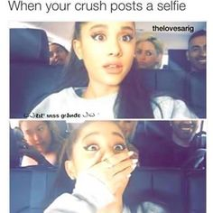 @agmyeverything (creds to her, she made this edit.) but im @oosnapitzanj - this is me when ari posts a selfie EDIT CREDS TO @agmyeverything im not stealing don't block.