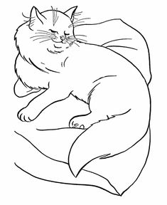 cat color pages printable cat coloring pages printable sassy cat on a pillow coloring
