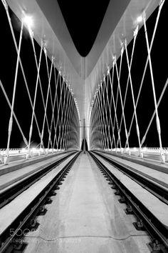 Troja bridge by PetrHanisch #architecture #building #architexture #city #buildings #skyscraper #urban #design #minimal #cities #town #street #art #arts #architecturelovers #abstract #photooftheday #amazing #picoftheday
