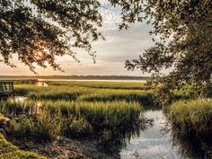 The South's Best Small Town 2017: Beaufort, South Carolina | SouthernLiving