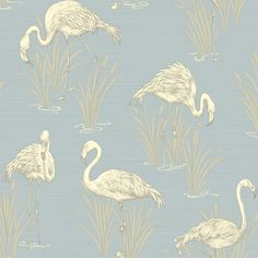 Flamingos wallpaper soft blue