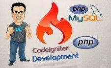 fix and build websites in CodeIgniter