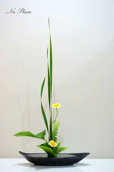Ikebana arrangement (Yellow flowers)