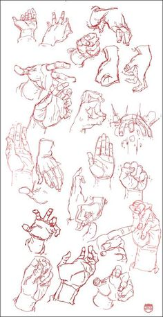 Hand Study - how to draw the human hand, in varying positions. I think that this reference is best for when drawing male hands, judging by the sketches. Life Drawing, Figure Drawing, Drawing Sketches, Art Drawings, Sketching, Drawing Hands, Drawing Tips, Hand Reference, Drawing Reference