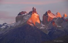 https://flic.kr/p/e6LeF7 | Sunrise lights up the famous Horns ( Cuernos), Torres del Paine NP, Patagonia, Chile (Better in full size) | The entire Paine Massif has been sculpted by receding glacier erosions millions of years ago. Particularly, the Horns consist of central bands of exposed granite which strogly contrasts with their dark aspects at the top, which are remnants of a heavily eroded sedimentary stratum. The differing geological properties are the reason why the sunlight is…