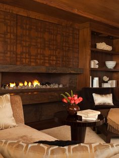 Fireplaces Design, Pictures, Remodel, Decor and Ideas