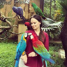 Credit: @olgakochneva . Visit Indonesia's largest bird paradise 1000 birds 250 species 1 great day out Booking online sekarang juga melalui @ebalitour untuk mendapatkan diskon tiket masuk ke Bali Bird Park . info dan reservasi SMS or WhatsApp: 085645218817 Line: e-bali website : www.ebalitour.com . #balibirdpark #whitecockatoo #indonesia #bali #cockatoo #birdie #curiousbirdie #sweetbird #badguy #birds #birdpark #birdencounter #island #amazing #parrot #boy #sewamobilbali #sunny #smile #view…