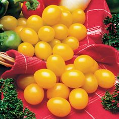 A yellow grape Tomato with sweet-tart flavor, large yields, and great holding power.