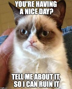 Grumpy Cat | YOU'RE HAVING A NICE DAY? TELL ME ABOUT IT, SO I CAN RUIN IT | image tagged in memes,grumpy cat | made w/ Imgflip meme maker