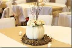 Rustic wedding theme surely judges your creative and decorative abilities. Here are best and unique ideas to create rustic wedding centerpieces on your big day. White Pumpkin Centerpieces, Rustic Wedding Centerpieces, Diy Centerpieces, Pumpkin Wedding, Wedding Pumpkins, Deco Champetre, Do It Yourself Wedding, White Pumpkins, Small Pumpkins
