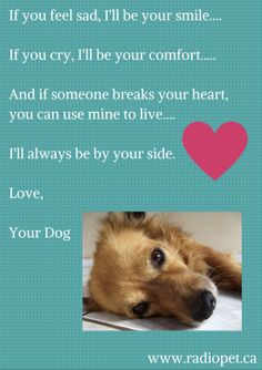 I'll be your smile - now and forever!  #dogs #canine #pets #quotes #animals Created by:  www.radiopet.ca