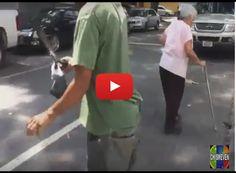 Cazando palomas para poder alimentarse en Venezuela Ya no hay careta ni máscara que le sirva a éste régimen asesino. Hoy vemos cómo las personas se están muriendo de hambre y van por las calles... http://www.facebook.com/pages/p/584631925064466