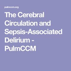 The Cerebral Circulation and Sepsis-Associated Delirium - PulmCCM