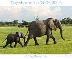 Tageshoroskop 09.05.2015- Robby Altwein