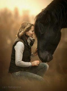 Photo Love by Lia Falinski on Horse Girl Photography, Equine Photography, Animal Photography, Morning Photography, Beautiful Dream, Beautiful Horses, Animals Beautiful, Horse Photos, Horse Pictures