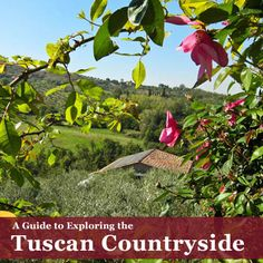 #Tuscany is a great place to visit. Use this guide to plan your trip to #Italy.