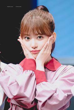 Yuri, Sakura Miyawaki, Japanese Girl Group, My Sunshine, Girl Crushes, Cherry Blossom, My Girl, To My Daughter, Disney Characters