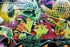 Google Image Result for http://andrewprokos.com/d/abstract-street-mural-nyc%3Fg2_itemId%3D5971