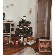 I imagine this in my future apartment... maybe a bigger tree  love it