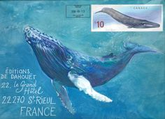 Courrier à nageoires / Inédit . Envelope Lettering, You've Got Mail, Canada, France, Whale, Blog, Drawings, Instagram, Animals