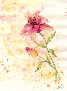 Watercolor Lilies by Rosaka-Chan http://rosaka-chan.deviantart.com/art/Watercolor-Lilies-160117783