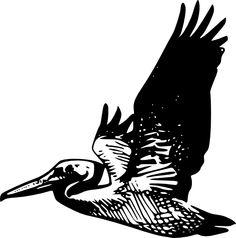pelican tattoo - Google Search