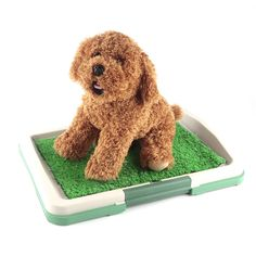 2017 New Indoor Dog Toilet Mat Puppy Potty Pad Training Seat Tray Dogs Toys Play Fake Grass Pet Supplies Products Accessories
