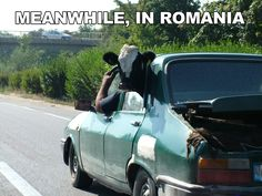 Meanwhile in Romania...