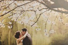 mariage manoir de corny