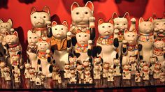 Maneki Nekos - Seto & Kutani. Painted Porcelain. A Display from the Collection of Billie Moffitt.