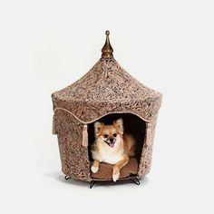 Camelot Pet Tent Bed       >>>>> Buy it now    http://amzn.to/2beKAC4