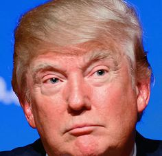 The Elephant in the Room It's time we talked openly about Donald Trump's mental health. Psychology Today