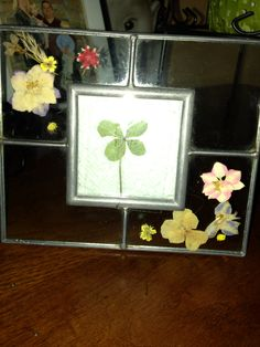 Found a four leaf clover on the 4th of July! Framed it nicely!