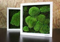 Numărul de martie igloo aduce natura mai aproape! Comandă-l online și câștigă tabloul Poteca Studio! - igloo.ro Martie, Arch, How To Make, Green, Longbow, Wedding Arches, Bow, Arches, Belt