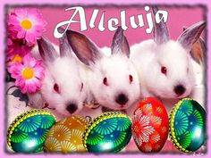 Wielkanoc: Animowane kartki wielkanocne z życzeniami Easter, Christmas Ornaments, Holiday Decor, Moving Pictures, Easter Activities, Christmas Jewelry, Christmas Ornament, Christmas Baubles