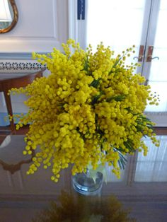Wedding bouquet with yellow mimosa.