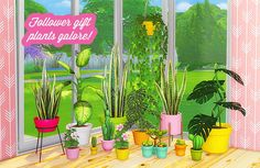 Plants Galore at Lina Cherie • Sims 4 Updates