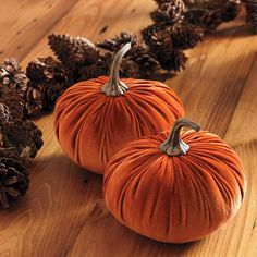 Autumn Romance Velvet Pumpkin - 2 Cute Home Decor, Fall Home Decor, Autumn Home, Avon Catalog, Catalog Online, Avon Products, Welcome Fall, Cosmetics Online Shopping, Fall Decorations