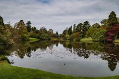 Where has the beautiful weather gone? Spring seems to have gone missing these past few weeks and we've been thinking about putting the heating back on...the heating on in May!  This week's #MySundayPhoto was taken at Sheffield Park it overlooks one of the ponds that makes up the @nationaltrust Trust garden.  If you want to join in pop over to the blog and simply add a link to your blog post or add a link to an Instagram photo.   #iheartnature #alovefornaturesbest #ofquietmoments…