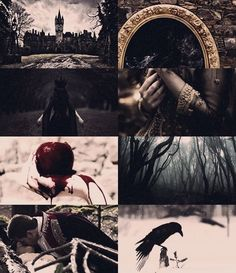 "scarletwitchwriites: ""Fatal Fairytales - Snow White She is known across the lands as the fairest of them all. Princess Aesthetic, Disney Aesthetic, Aesthetic Collage, White Aesthetic, Wallpaper Snow White, Story Inspiration, Character Inspiration, Dark Fairytale, Art Photography"