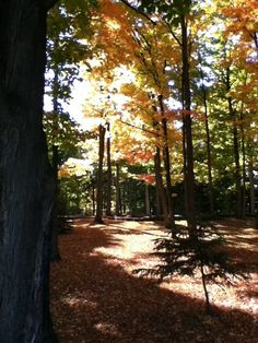 """Last Fall here in """"Up North"""" Michigan...it's so very beautiful up here!!"""